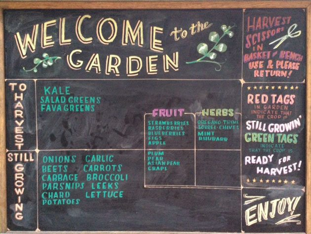 Welcome to the Garden 1